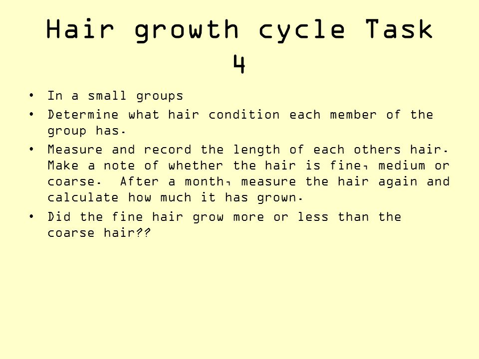 Hair growth cycle Task 4 In a small groups