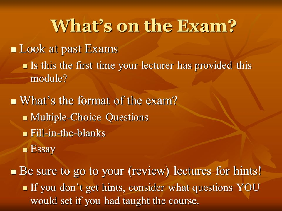 What's on the Exam Look at past Exams What's the format of the exam
