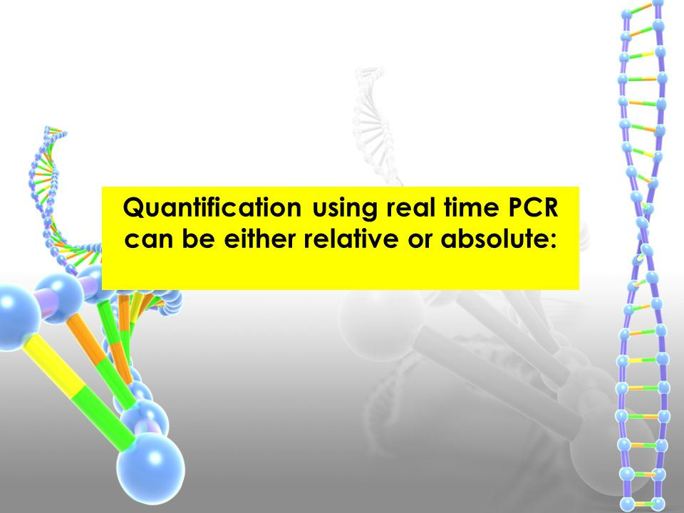 Quantification using real time PCR can be either relative or absolute: