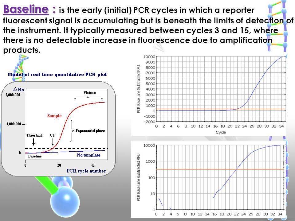 Baseline : is the early (initial) PCR cycles in which a reporter fluorescent signal is accumulating but is beneath the limits of detection of the instrument.
