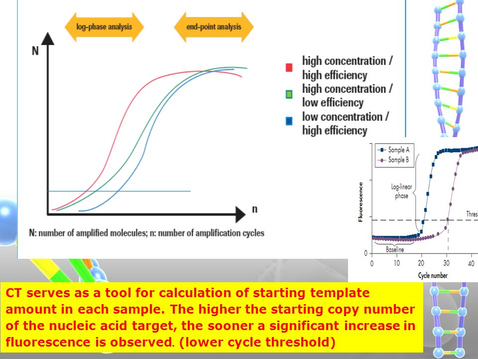 CT serves as a tool for calculation of starting template amount in each sample.