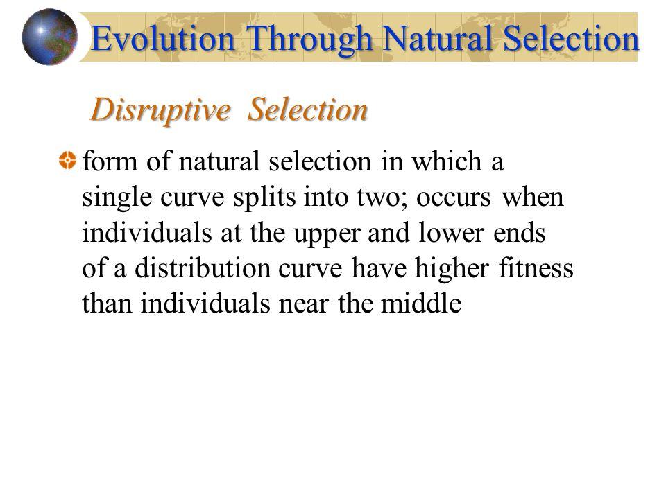 Evolution Through Natural Selection