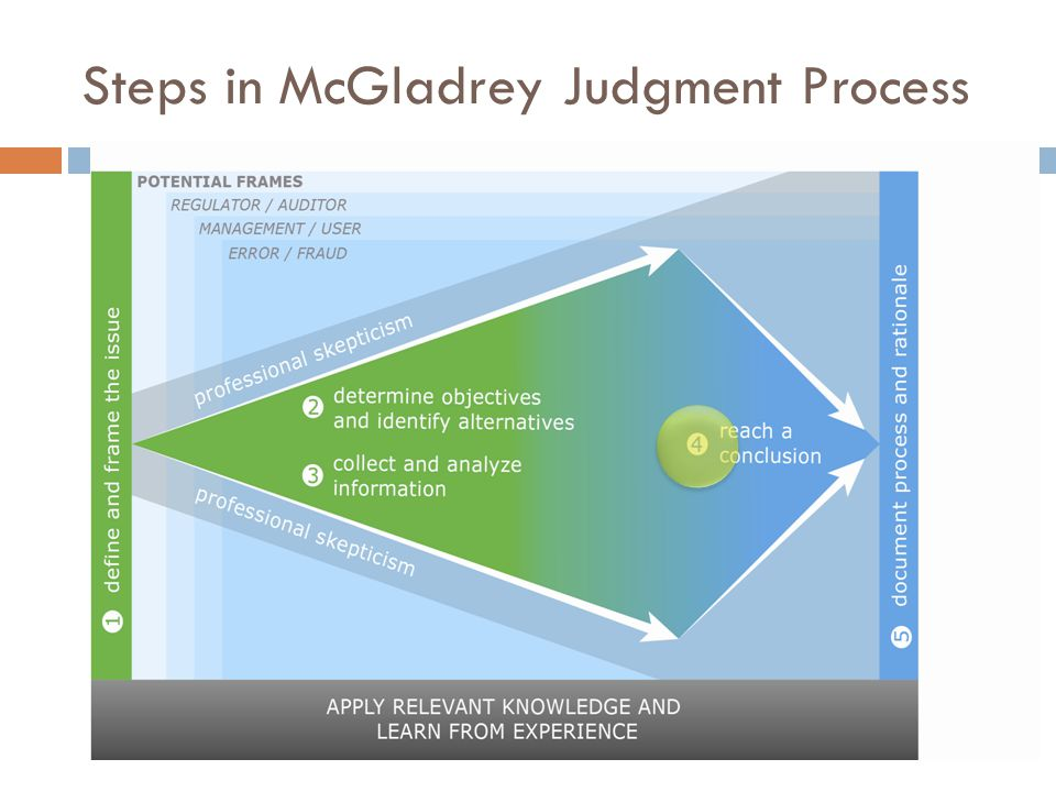 Steps in McGladrey Judgment Process