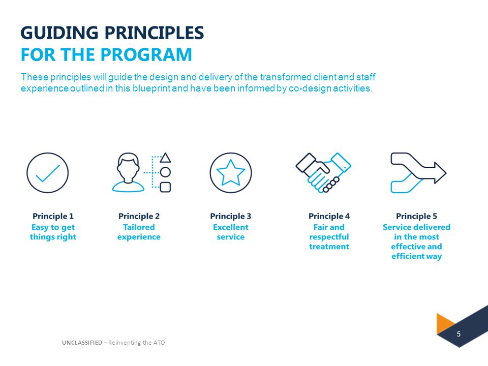 GUIDING PRINCIPLES FOR THE PROGRAM