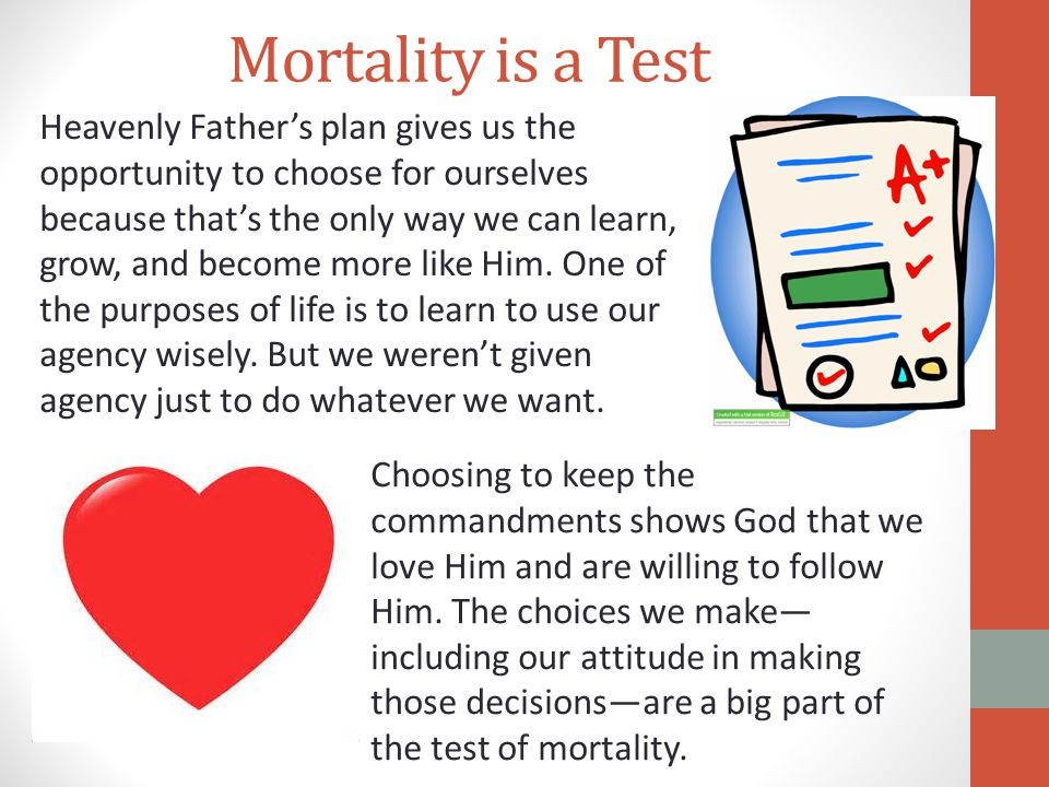 Mortality is a Test