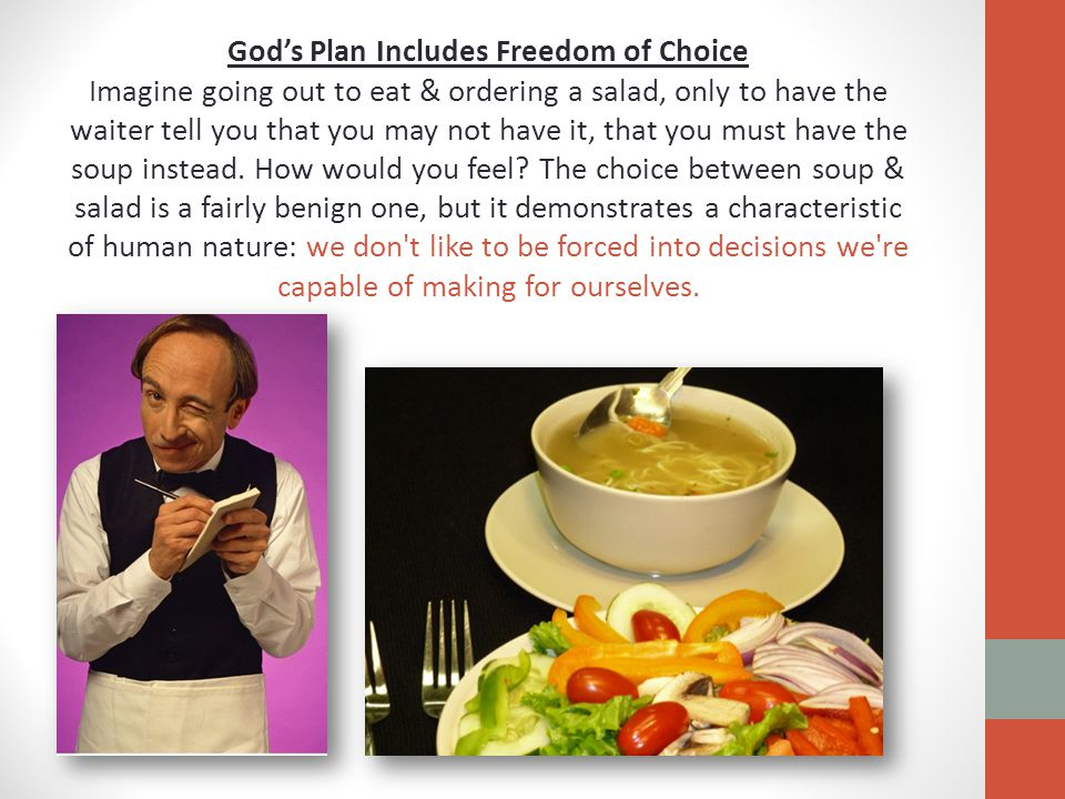 God's Plan Includes Freedom of Choice Imagine going out to eat & ordering a salad, only to have the waiter tell you that you may not have it, that you must have the soup instead.