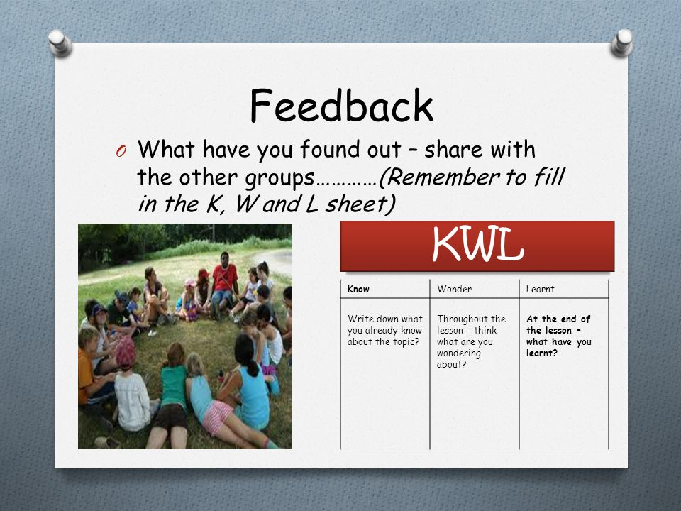 Feedback What have you found out – share with the other groups…………(Remember to fill in the K, W and L sheet)