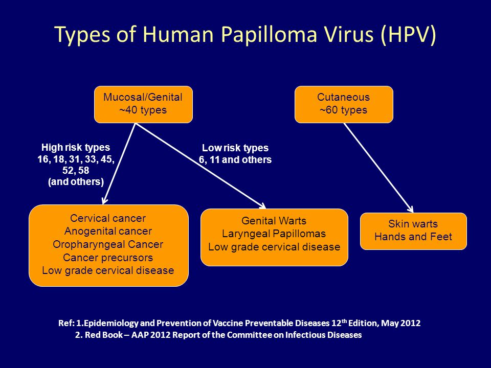 Types of Human Papilloma Virus (HPV)