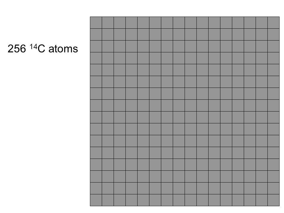 256 14C atoms