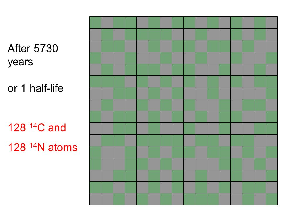 After 5730 years or 1 half-life 128 14C and 128 14N atoms