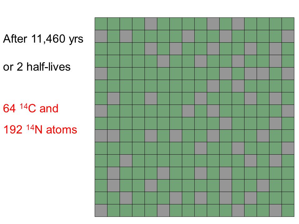 After 11,460 yrs or 2 half-lives 64 14C and 192 14N atoms