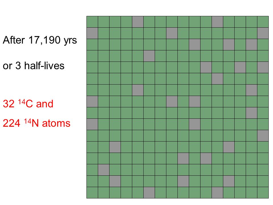 After 17,190 yrs or 3 half-lives 32 14C and 224 14N atoms