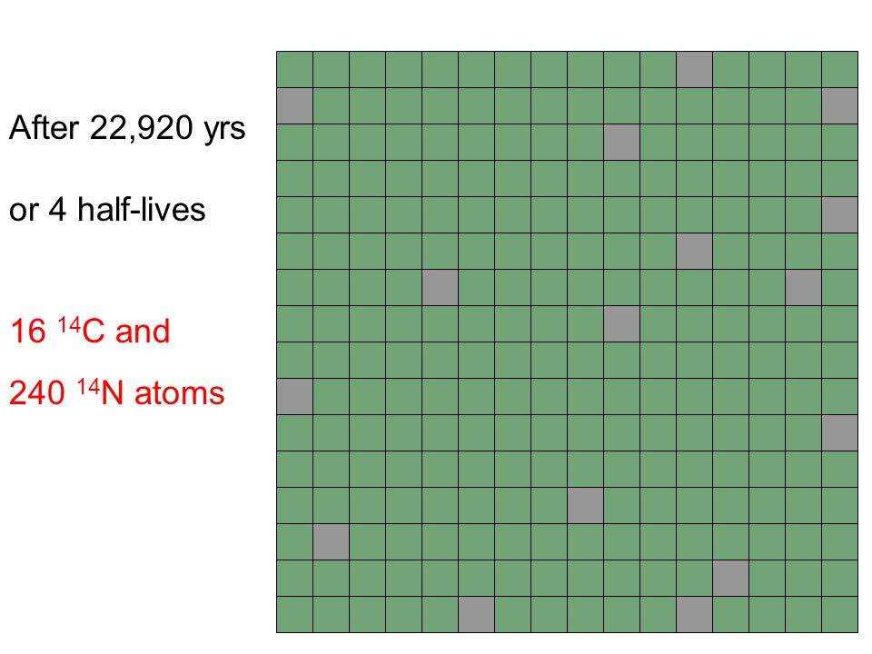 After 22,920 yrs or 4 half-lives 16 14C and 240 14N atoms