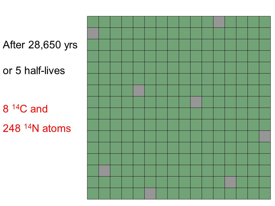 After 28,650 yrs or 5 half-lives 8 14C and 248 14N atoms