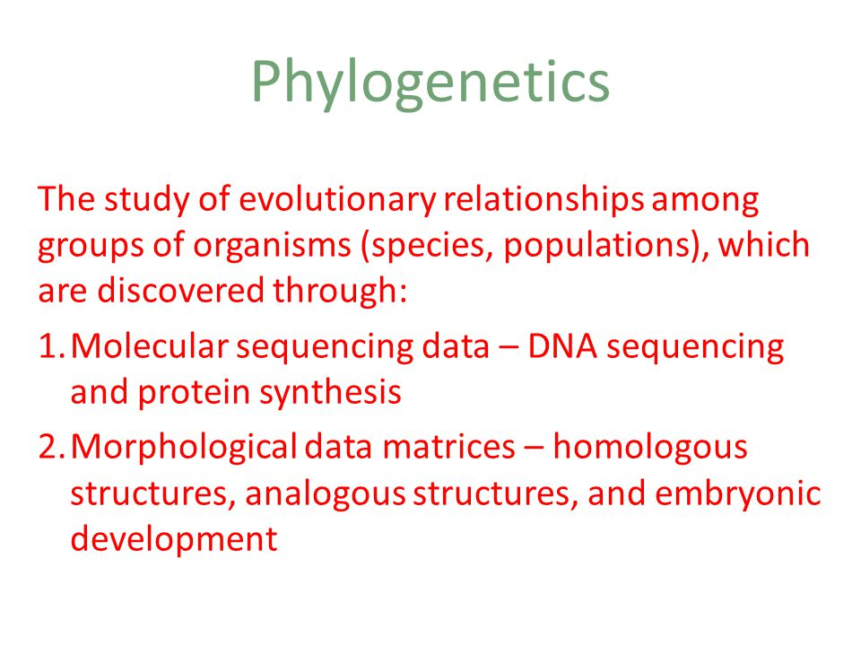 Phylogenetics The study of evolutionary relationships among groups of organisms (species, populations), which are discovered through: