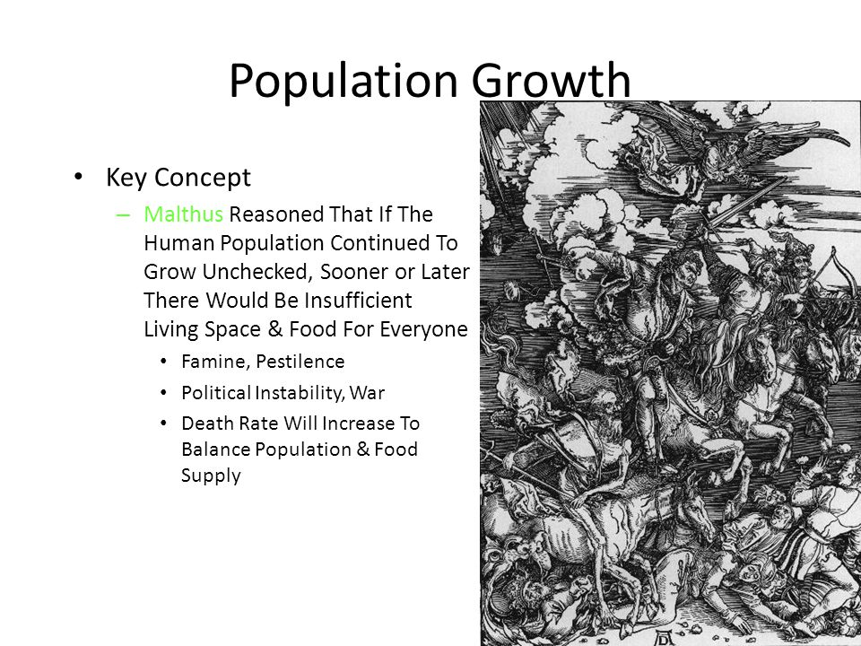 Population Growth Key Concept
