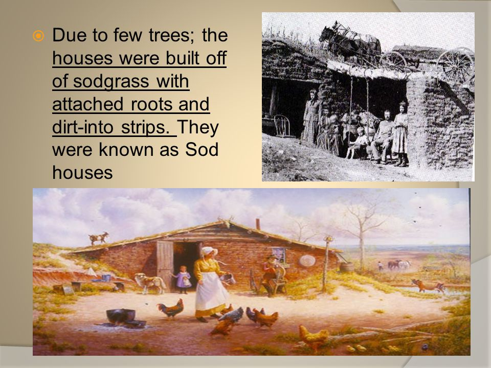 Due to few trees; the houses were built off of sodgrass with attached roots and dirt-into strips.