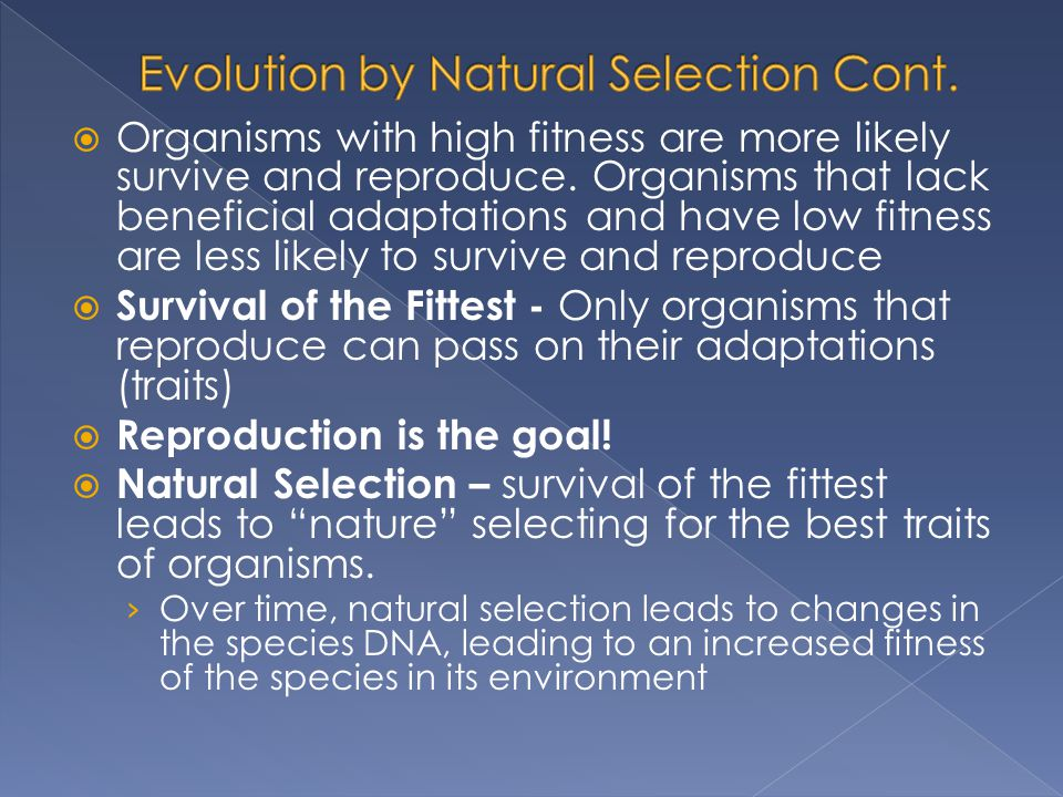 Evolution by Natural Selection Cont.