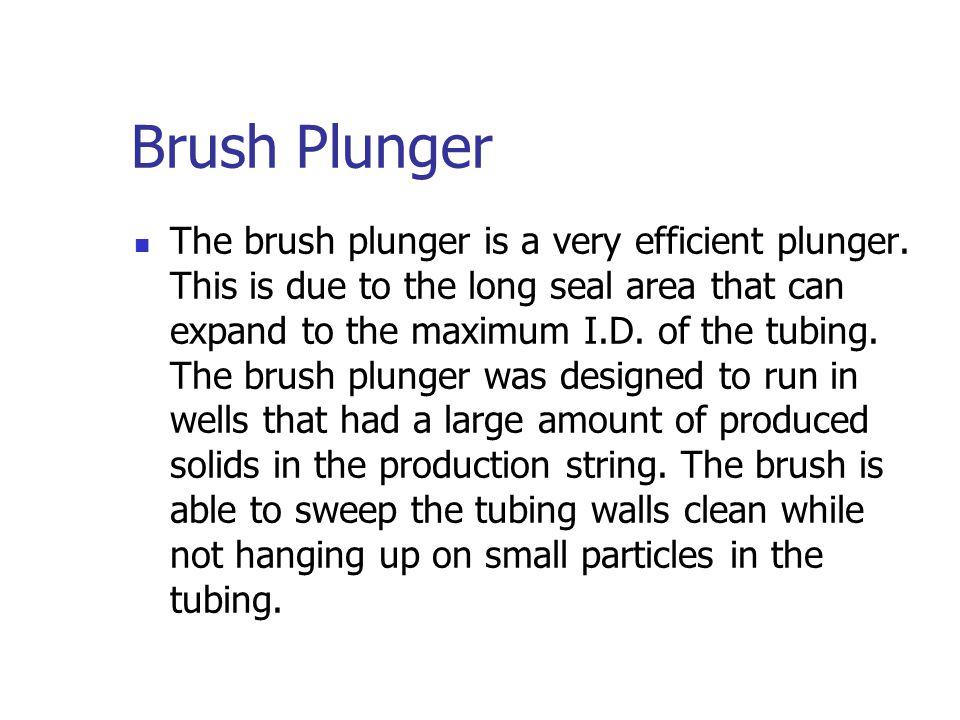 Brush Plunger