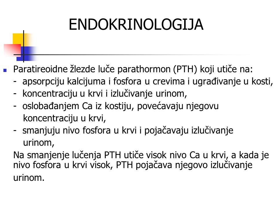 ENDOKRINOLOGIJA Paratireoidne žlezde luče parathormon (PTH) koji utiče na: - apsorpciju kalcijuma i fosfora u crevima i ugrađivanje u kosti,