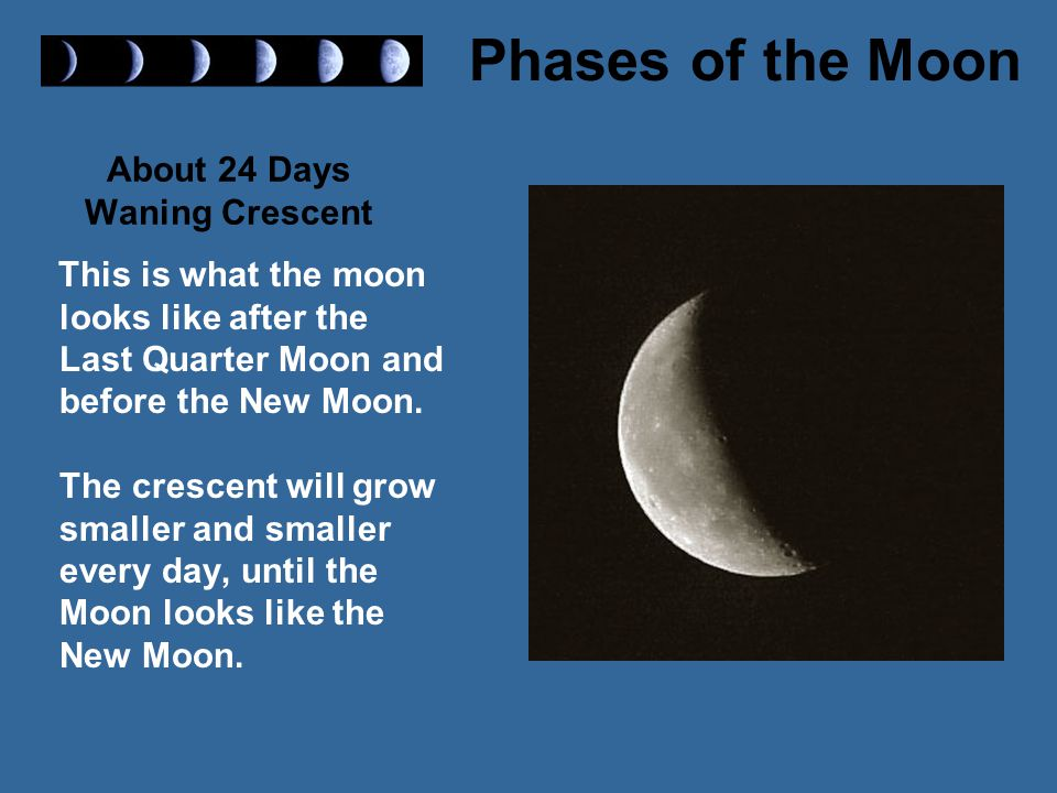 About 24 Days Waning Crescent