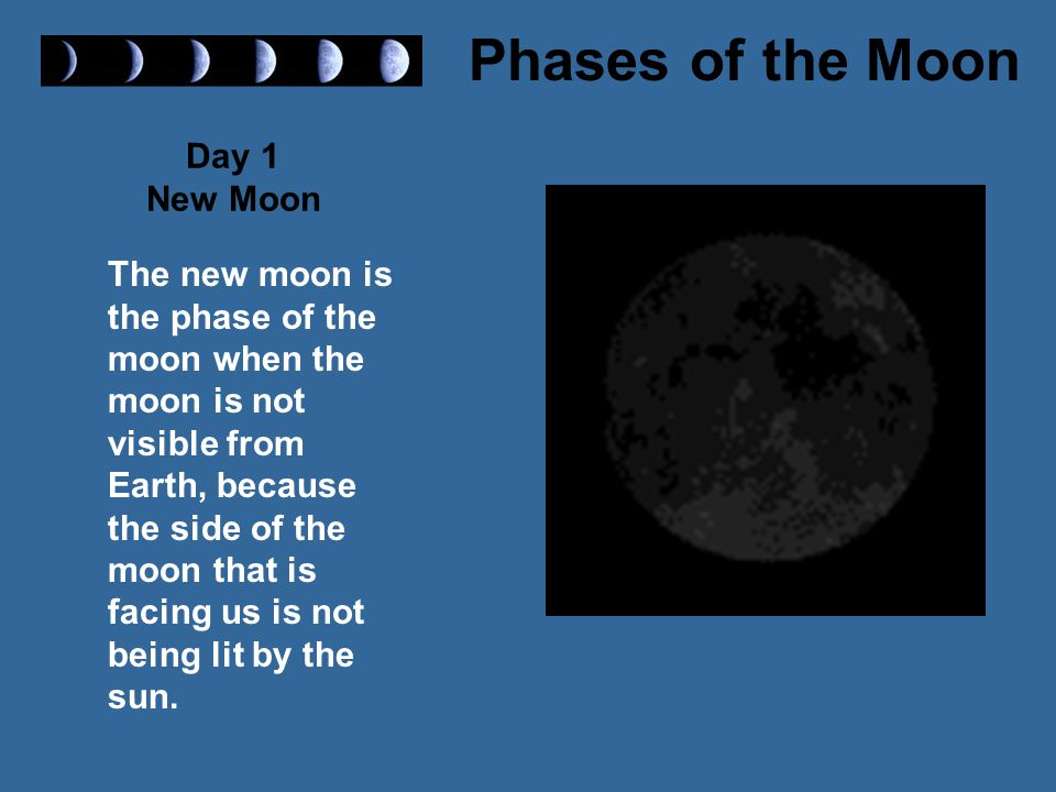 Day 1 New Moon