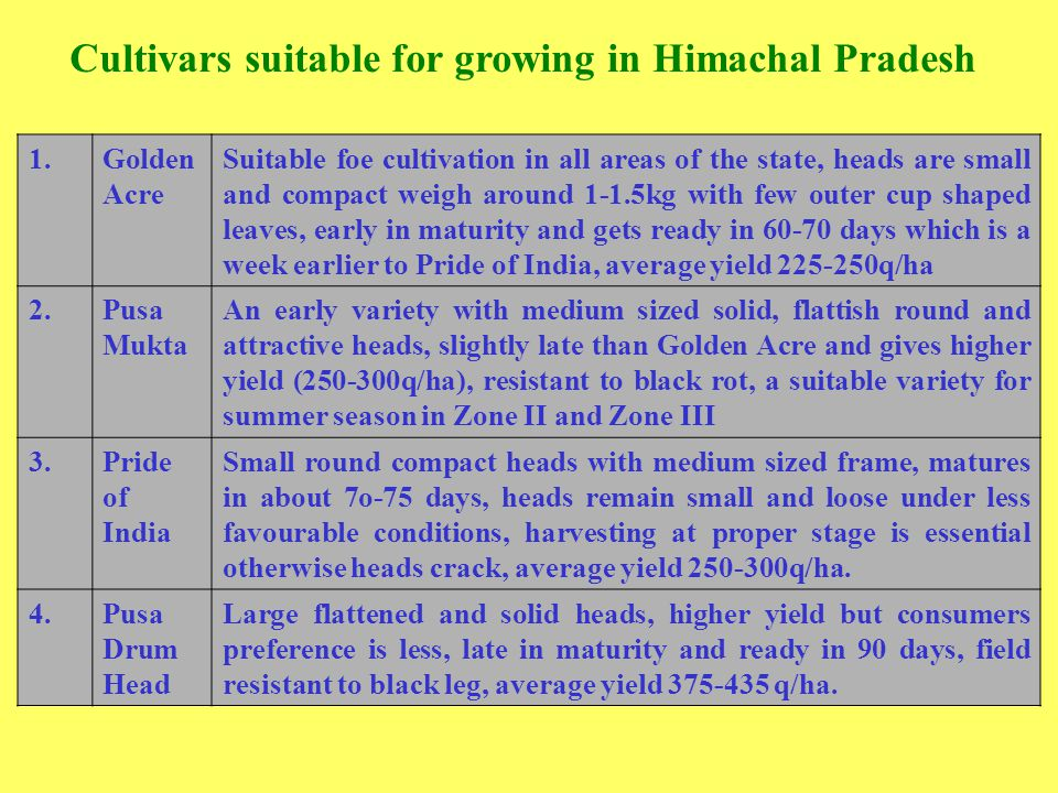 Cultivars suitable for growing in Himachal Pradesh