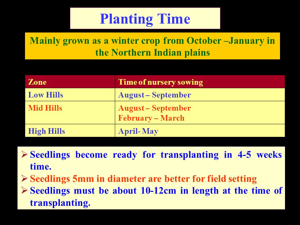 Planting Time Mainly grown as a winter crop from October –January in the Northern Indian plains. Zone.