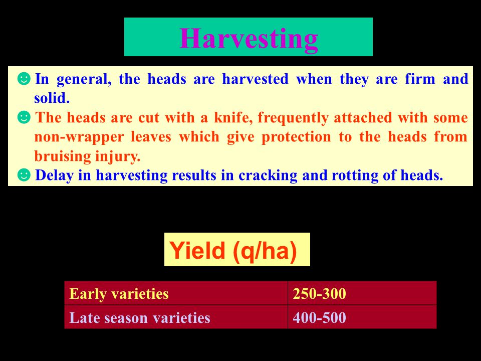 Harvesting Yield (q/ha)