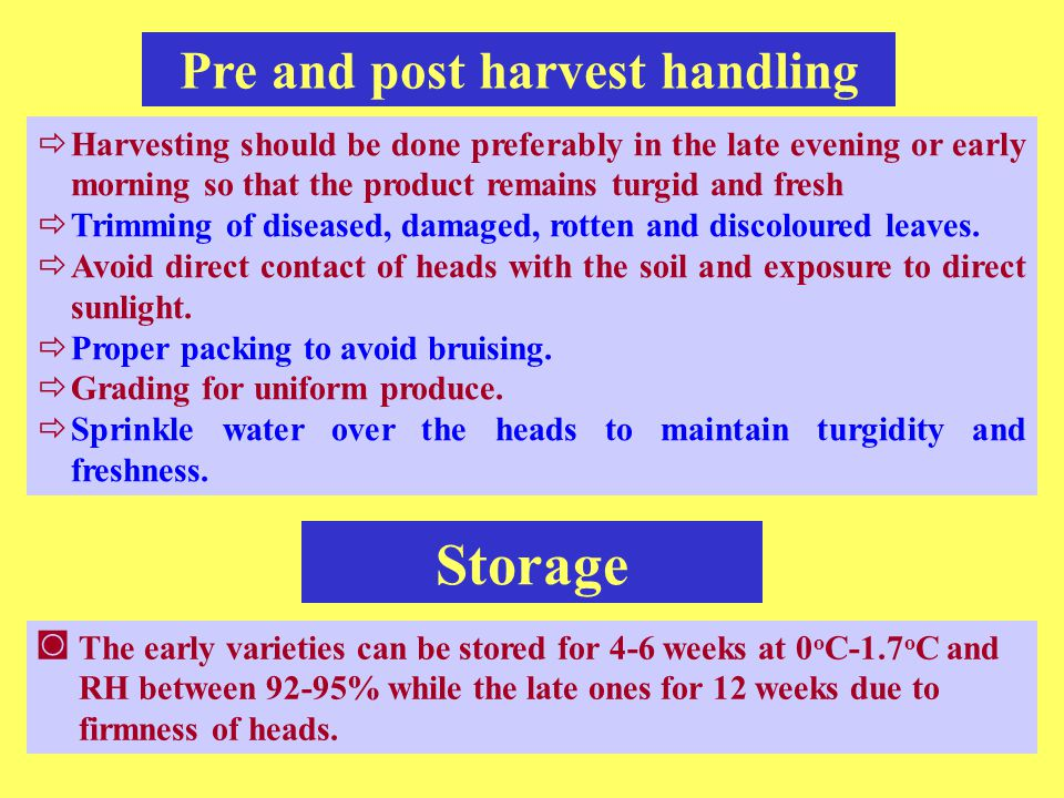 Pre and post harvest handling
