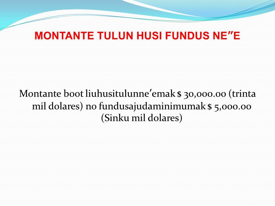 MONTANTE TULUN HUSI FUNDUS NE E