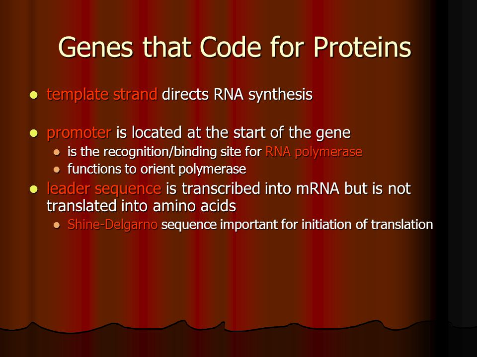 Genes that Code for Proteins
