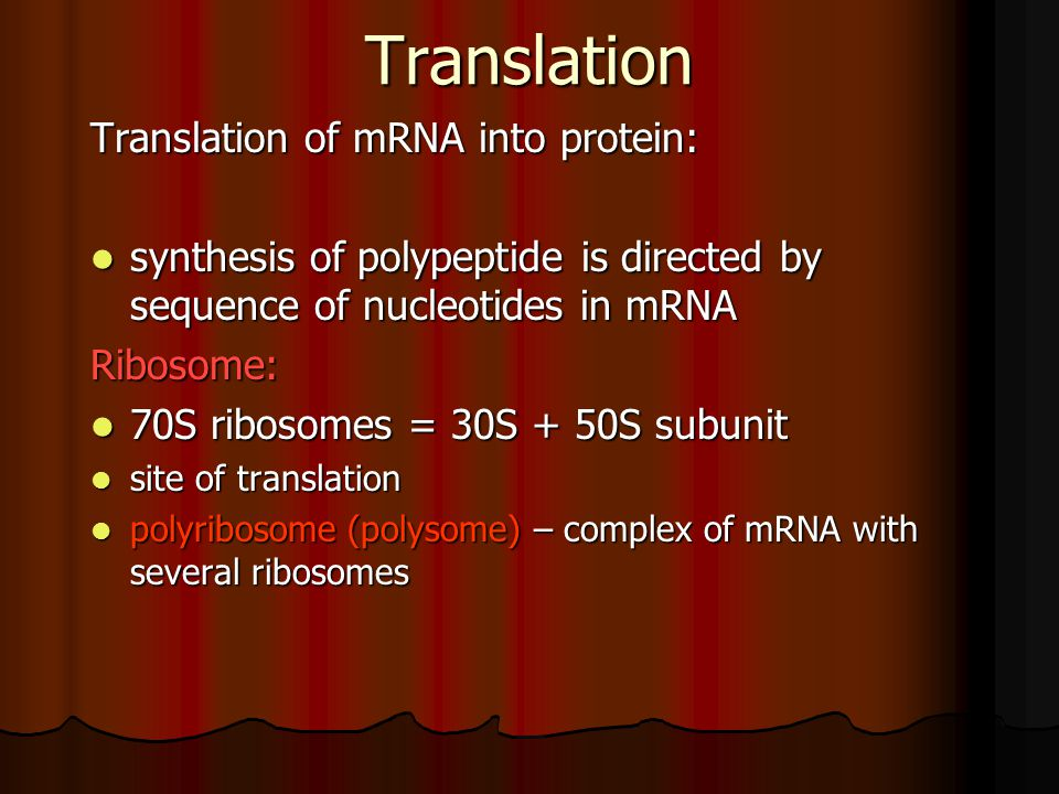 Translation Translation of mRNA into protein: