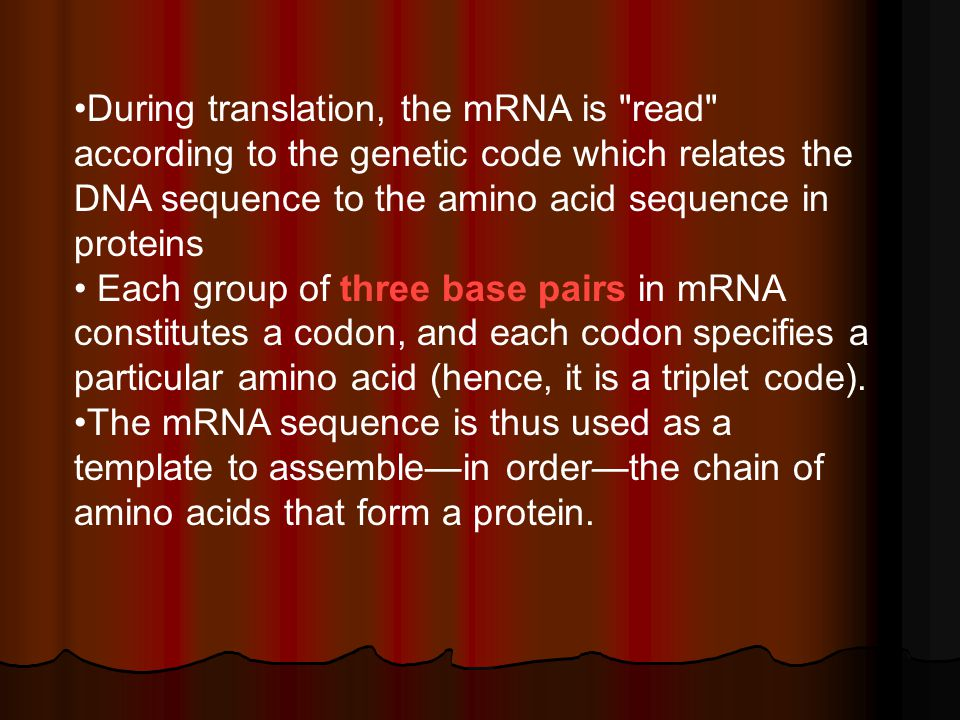 During translation, the mRNA is read according to the genetic code which relates the DNA sequence to the amino acid sequence in proteins