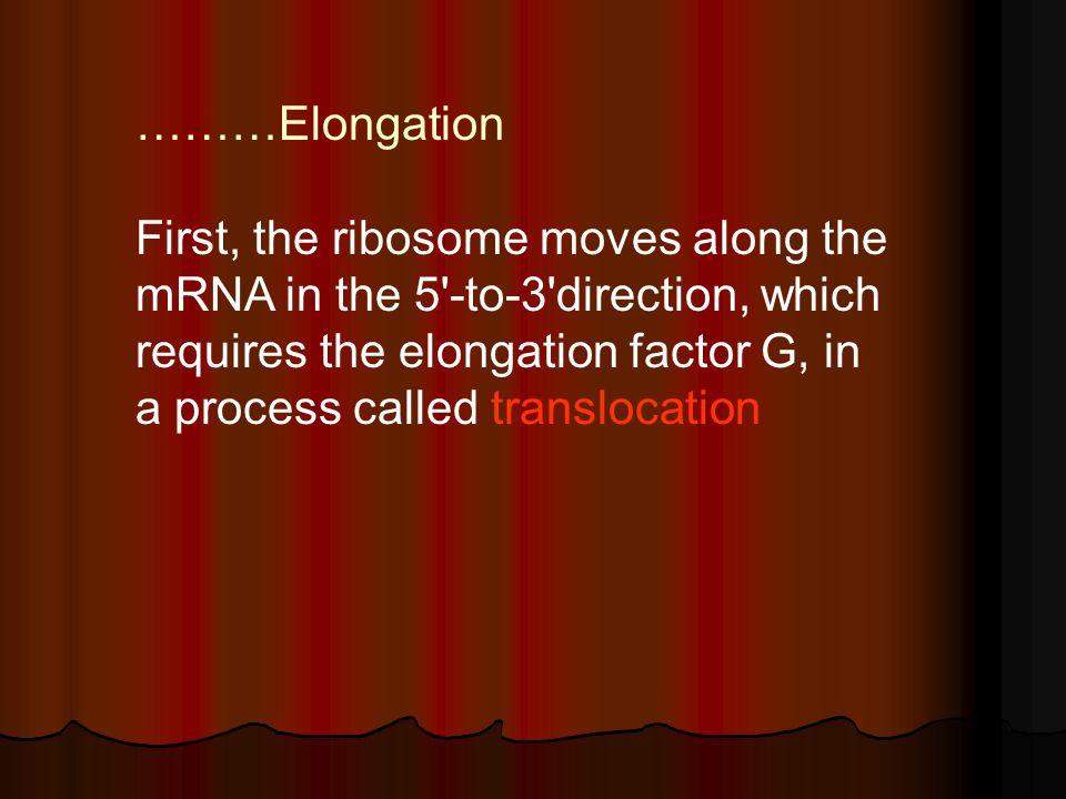 ………Elongation