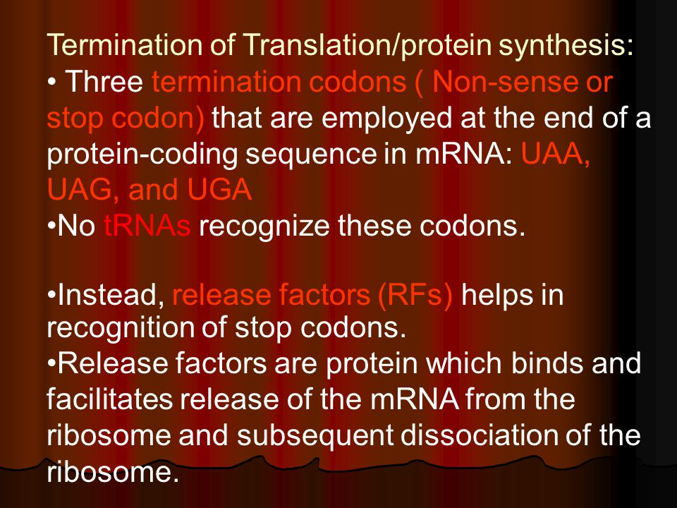 Termination of Translation/protein synthesis: