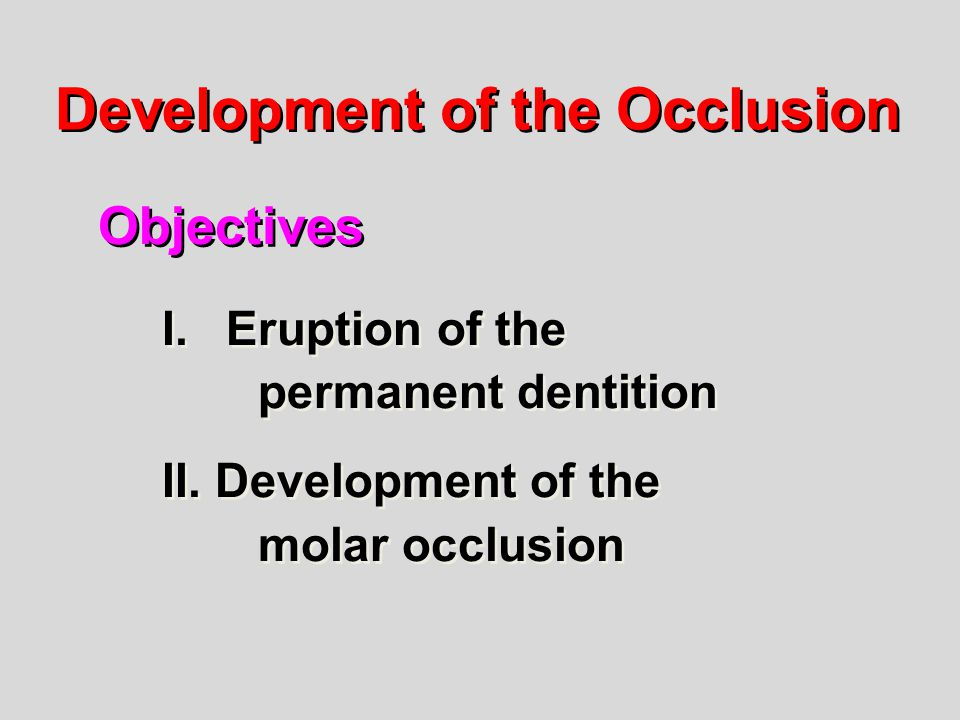 Development of the Occlusion