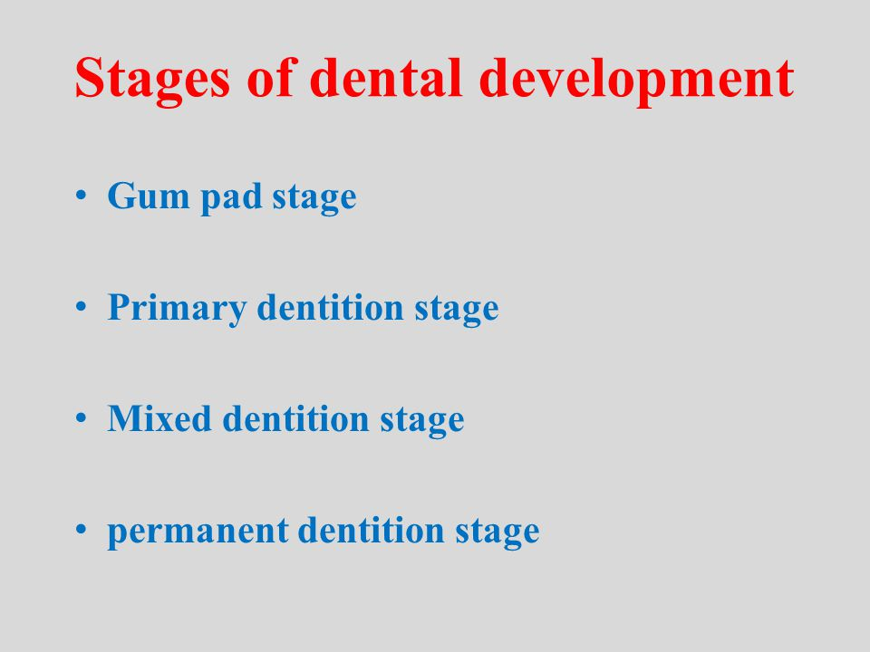 Stages of dental development