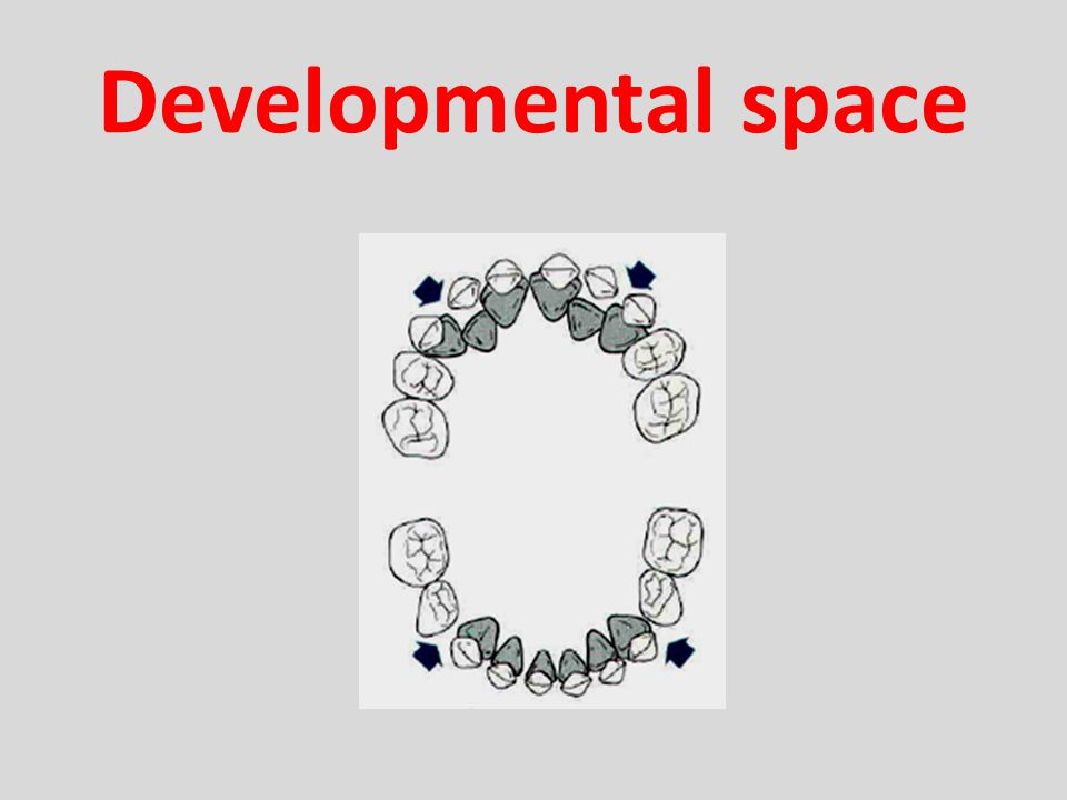 Developmental space