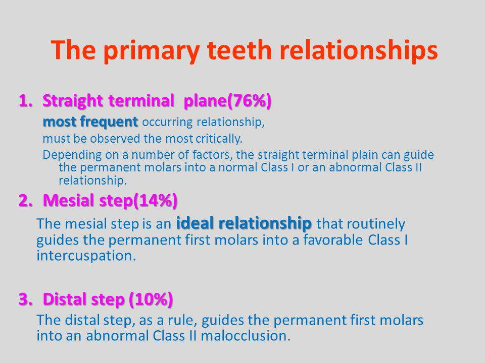 The primary teeth relationships