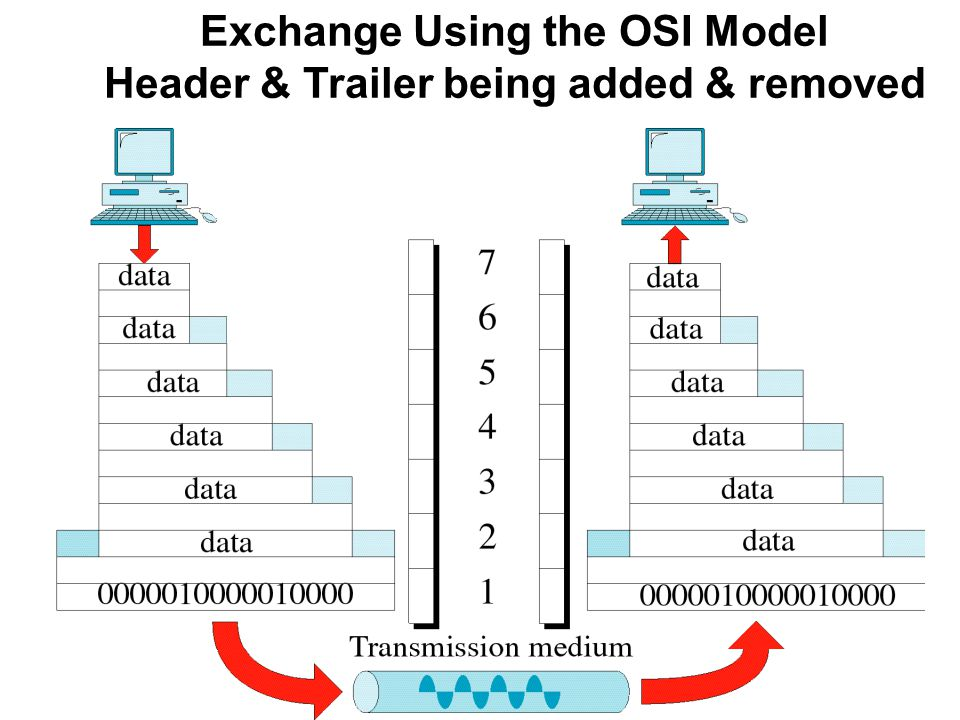 Exchange Using the OSI Model Header & Trailer being added & removed