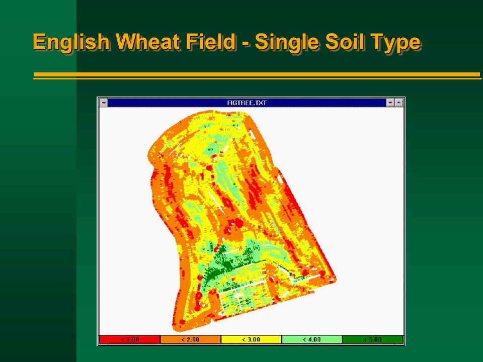 English Wheat Field - Single Soil Type