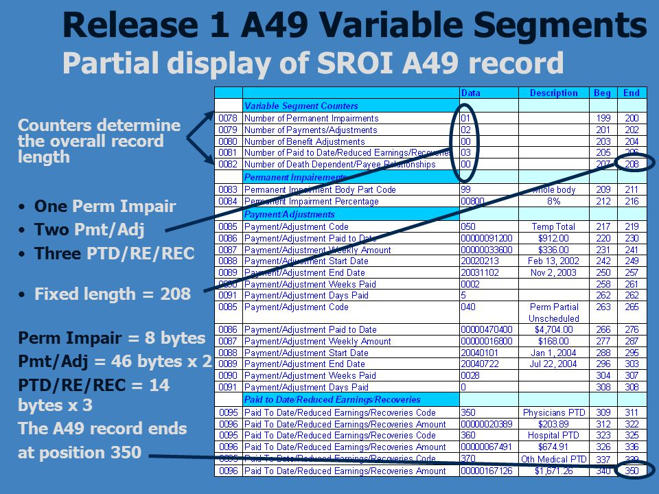 Release 1 A49 Variable Segments Partial display of SROI A49 record