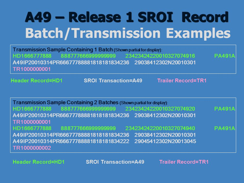 A49 – Release 1 SROI Record Batch/Transmission Examples
