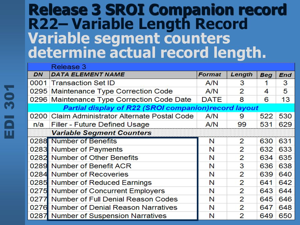 Release 3 SROI Companion record R22– Variable Length Record Variable segment counters determine actual record length.