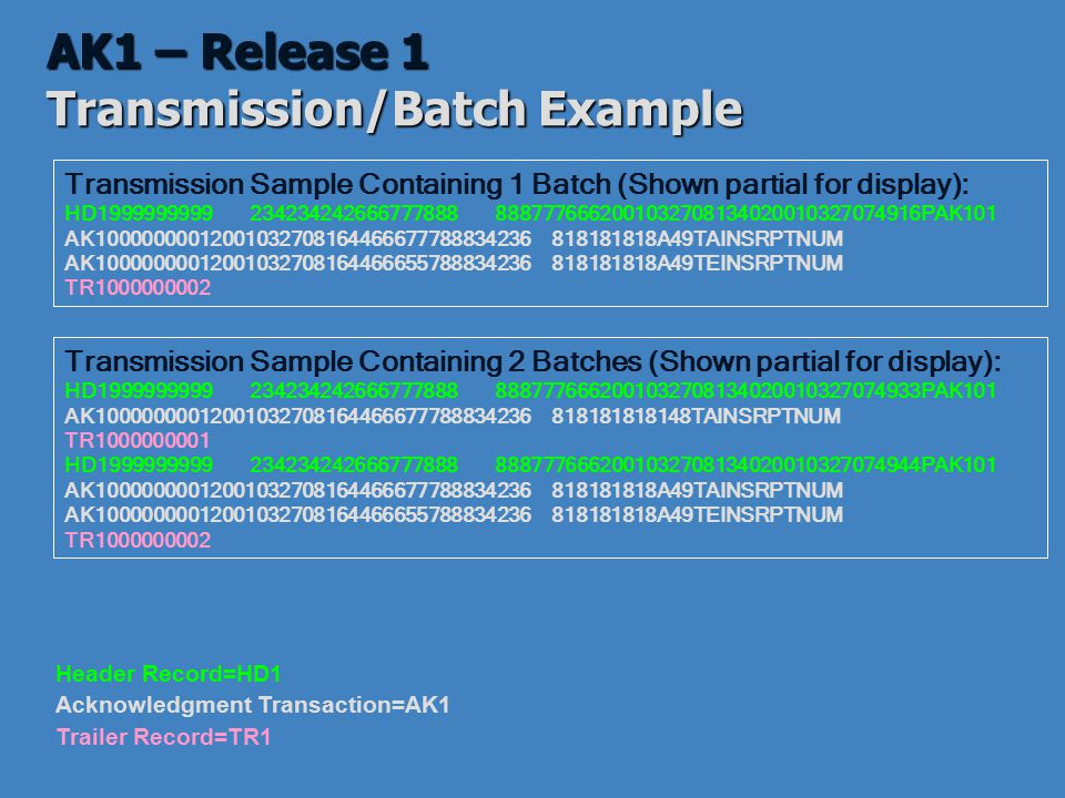 AK1 – Release 1 Transmission/Batch Example