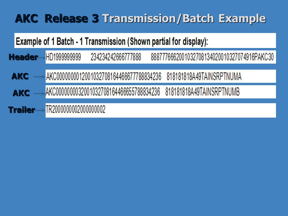 AKC Release 3 Transmission/Batch Example