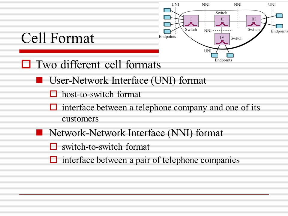 Cell Format Two different cell formats
