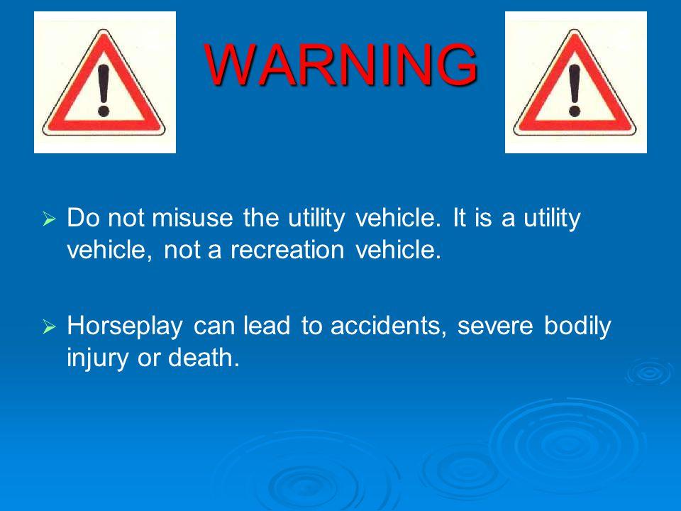 WARNING Do not misuse the utility vehicle. It is a utility vehicle, not a recreation vehicle.