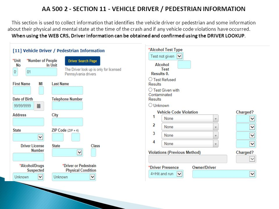 AA 500 2 - SECTION 11 - VEHICLE DRIVER / PEDESTRIAN INFORMATION